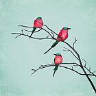 Cardinal birds by Sybille Sterk