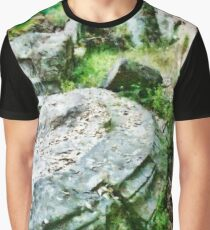 Archaeological Site Graphic T-Shirt
