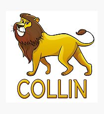 Collin Lion Drawstring Bags Photographic Print
