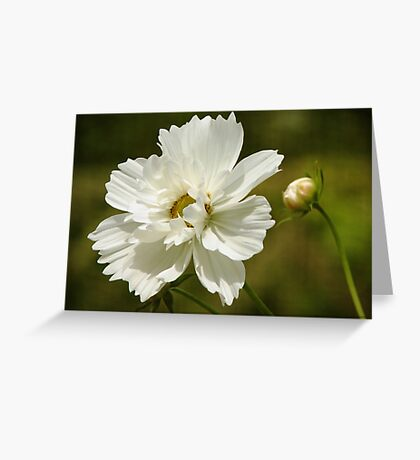 Beauty's Reflection Greeting Card