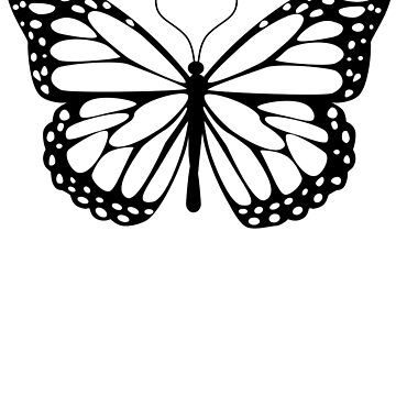 Butterfly Design by pablomendoza