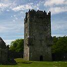 Aughnanure Castle by Martina Fagan