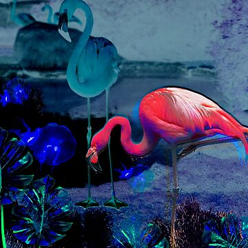 Flamingo Trance by underwatercity