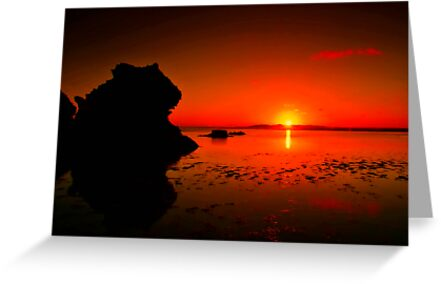 """""""Lonsdale Sunrise"""" by Phil Thomson IPA"""