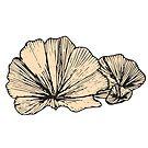 Fan Looking Mushrooms | Nature, Food, Art by C. Tarantino