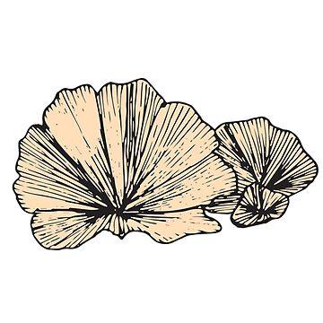 Fan Looking Mushrooms | Nature, Food, Art by SaTara