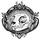 Cat skull by FaerytaleWings