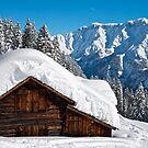 Alpine Barn by mamba