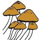 Mushrooms In The Wild | Nature, Food, Art by C. Tarantino