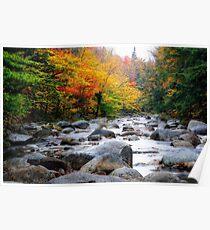 Rocky Creek Autumn Scenic Poster