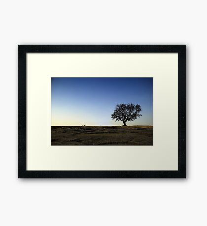 Alone on the Hill Framed Print