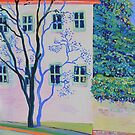 I caught a tree daydreaming in Balmain by Kerry  Thompson