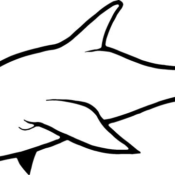 Angry Dolphin by shirtpossum