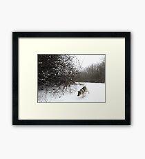 Snow Bend Framed Print