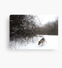 Snow Bend Canvas Print