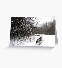 Snow Bend Greeting Card