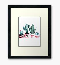 Cactus, cactuses,   Framed Print