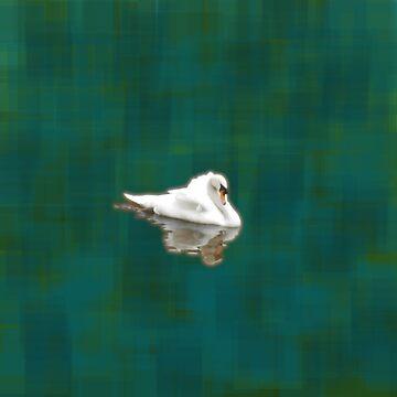 Swan by Lenka24