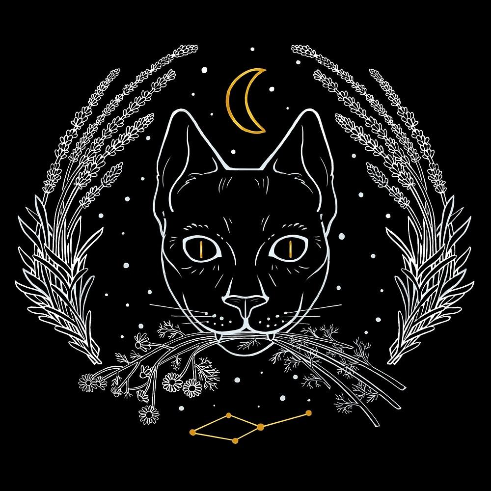 Familiar Series: Felis by Monica McClain