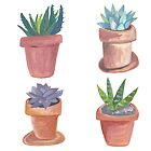 Fun with succulents! Check out these cute potted plants by shoshannahscrib