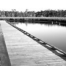 Old Fort Bayou Boardwalk by Jonicool