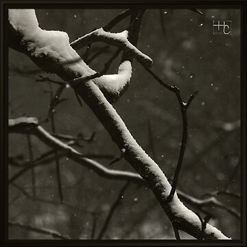 Cold March by SNik