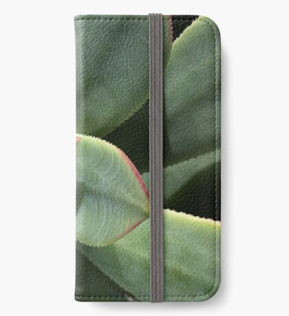 Greens Of Hens And Chicks iPhone Wallet