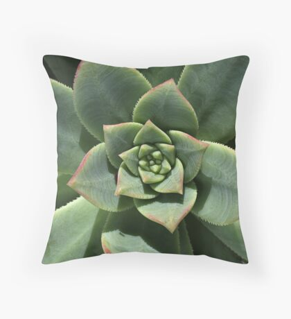 Greens Of Hens And Chicks Throw Pillow