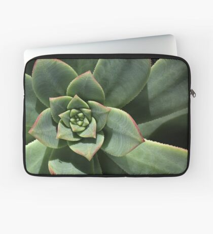 Greens Of Hens And Chicks Laptop Sleeve