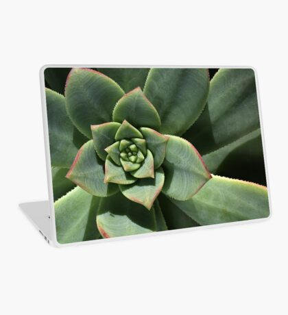 Greens Of Hens And Chicks Laptop Skin