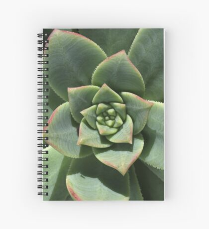 Greens Of Hens And Chicks Spiral Notebook