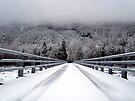 Bridge Over the Carbon River by Tori Snow