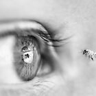 Eye and the Bee by nadine henley