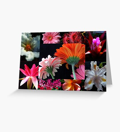 """""""Flower Collage"""" Greeting Card"""