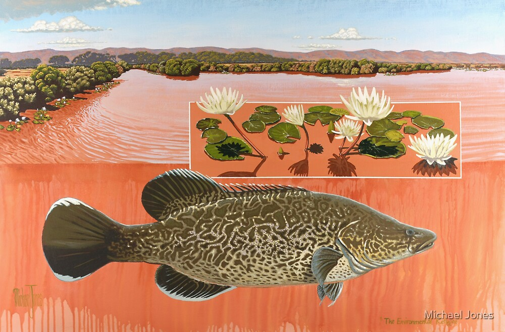 the environmental refugee (murray cod) by Michael Jones