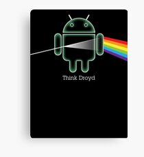Think Droyd Canvas Print