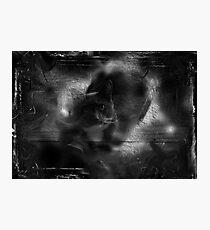 Talismanicat Photographic Print