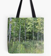 Stand of Birch Trees Tote Bag
