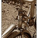 My Old Bike by CarolM