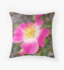 Swamp Rose (Rosa palustris var. scandens) and friend Throw Pillow