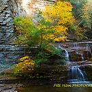 Autumn at the falls V by PJS15204