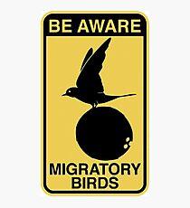 MONTY PYTHON BIRD COCONUT Photographic Print