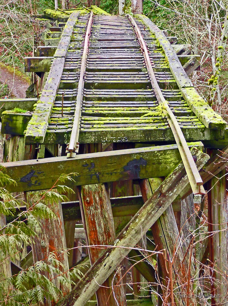 Tracks to Nowhere by Tamara Valjean