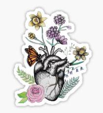 Floral Anatomy  Sticker