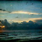 Ocean Springs Shoreline by Jonicool