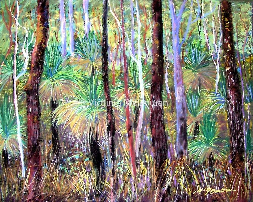Grass Trees Cunningham's Gap Queensland [Pastel] by Virginia McGowan