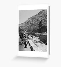 Walking the Camels Greeting Card