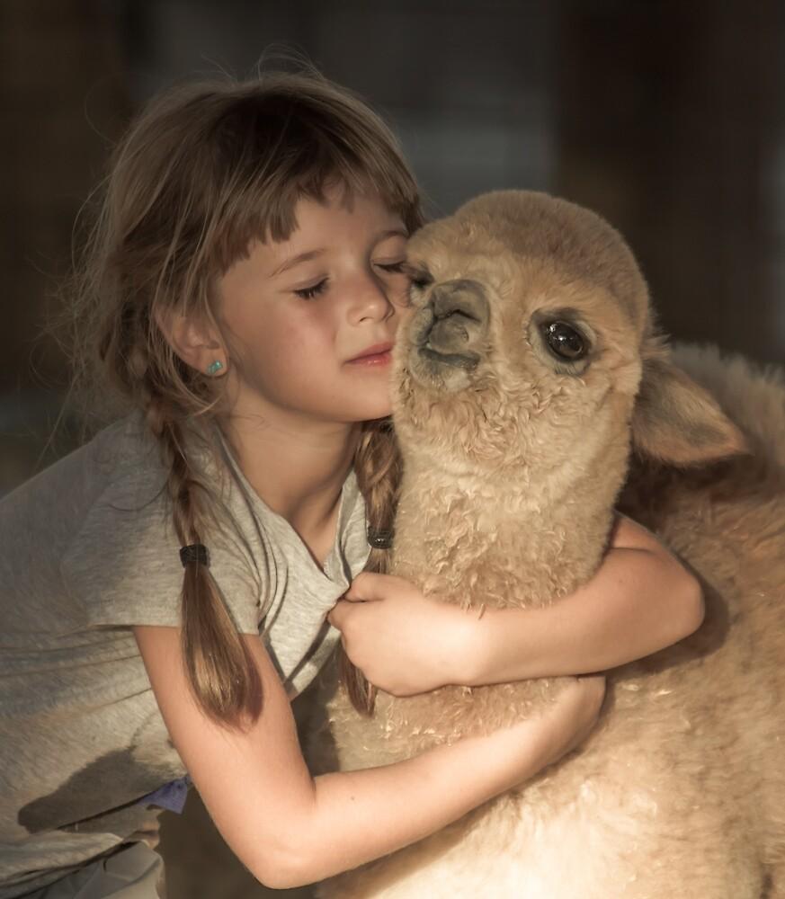 Llama Lovin' by Randy Turnbow