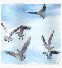 Gulls In Flight Watercolor Poster