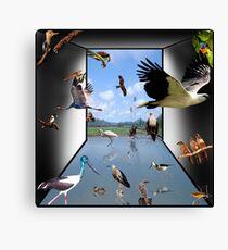 Birds - Yes! Canvas Print